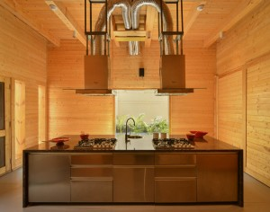 archohm_interior_architecture_noida_india_photography_bharat_aggarwal_exterior_delhi_wooden_house_wood (2)