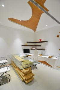 spaces_architects_kapil_aggarwal_office_interior_bharat_aggarwal_photography_www (13)