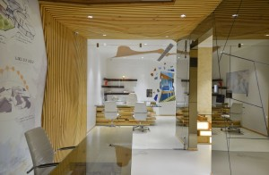spaces_architects_kapil_aggarwal_office_interior_bharat_aggarwal_photography_www (3)