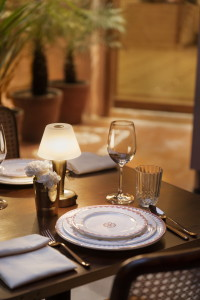 bharat_aggarwal_photographer_johri_new_york_times_tmagzine_hotel_photography_jaipur_rajasthan_india_architecture_interior_heritage_boutique_designer (13)