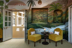 bharat_aggarwal_photographer_johri_new_york_times_tmagzine_hotel_photography_jaipur_rajasthan_india_architecture_interior_heritage_boutique_designer (17)
